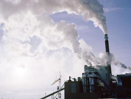 Штрафы за нарушение экологического законодательства слишком низкие