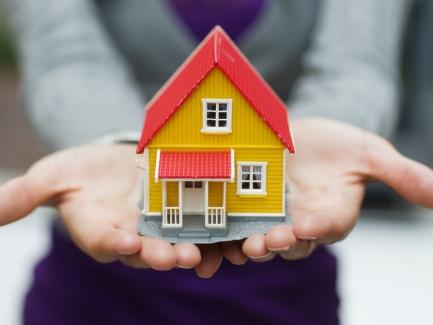 Может ли единщик быть управляющим недвижимого имущества