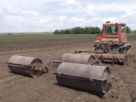 Сельхозпроизводитель поставлял сельхозпродукцию в таре: как начислять НДС