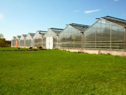 Как сельхозпроизводителю откорректировать налоговые накладные за февраль 2017 года