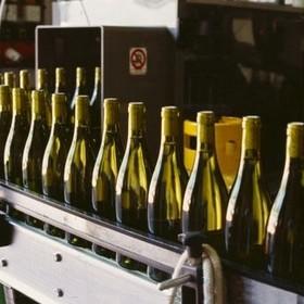 Для оптовых реализаторов алкоголя спецТТН не обязательна