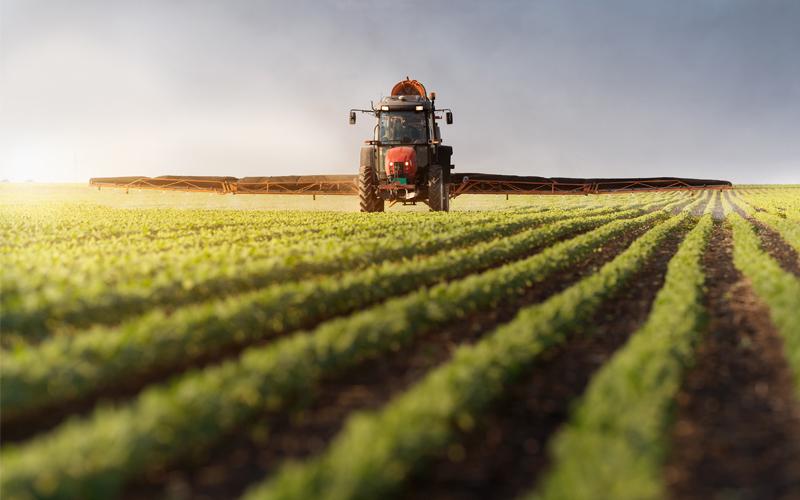 Как начать свой агробизнес в Украине?